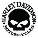 Skull Harley Davidson